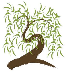 Willow tree illustration